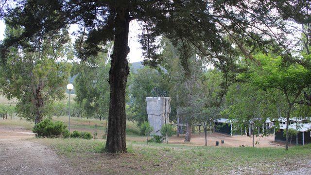Entorno del campamento, zona verde 2