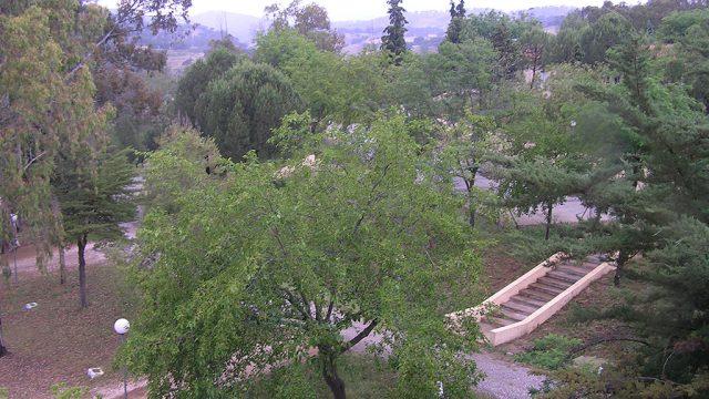 Entorno del campamento, zona verde 5