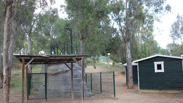 Entorno del campamento, zona verde 6