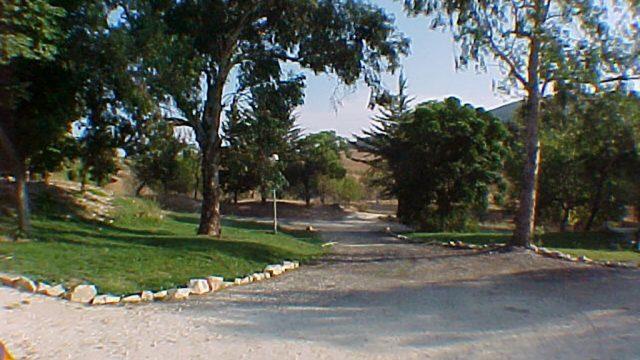 Entorno del campamento, zona verde 1