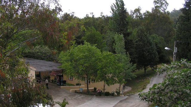 Entorno del campamento, zona verde 3